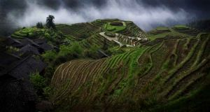 Longi Terraces, Longshen, China 2006